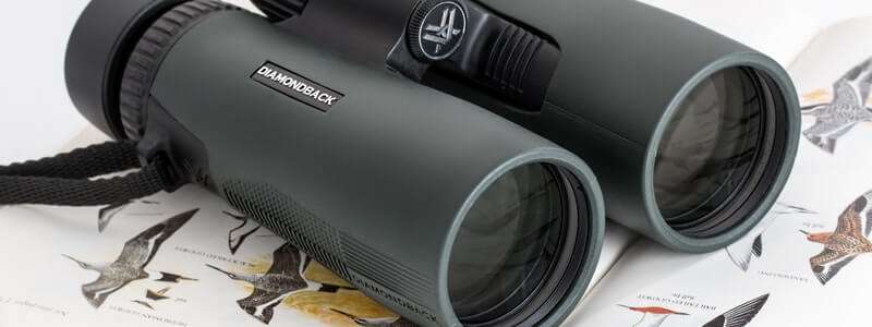 The 5 Best Auto Focus Binoculars – [Reviews & Rankings]