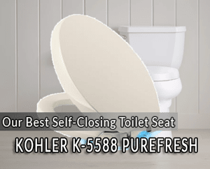 Strange The 5 Best Self Closing Toilet Seats Reviews Rankings Dailytribune Chair Design For Home Dailytribuneorg