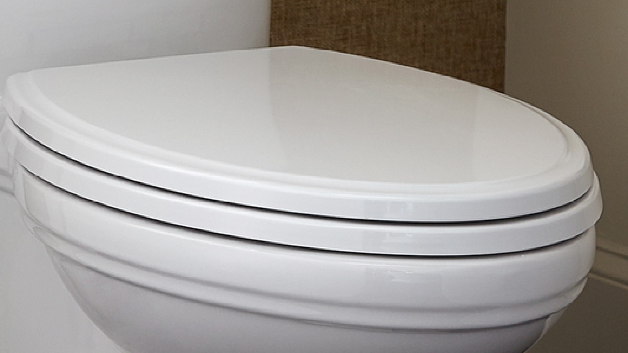 The 5 Best Self Closing Toilet Seats Reviews Rankings
