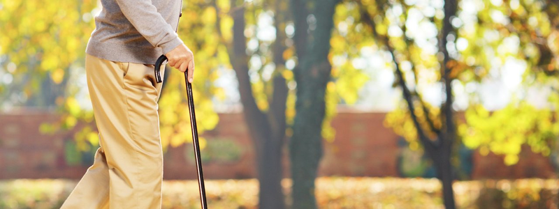 The 10 Best Folding Cane Seats – [Reviews & Rankings]