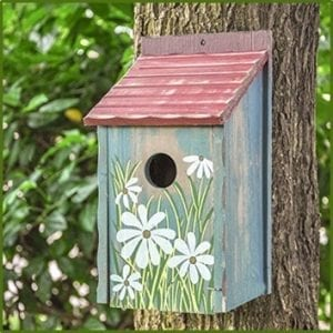 best birdhouse kits