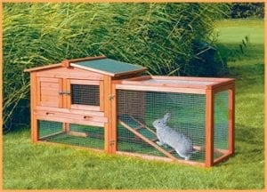best rabbit hutch