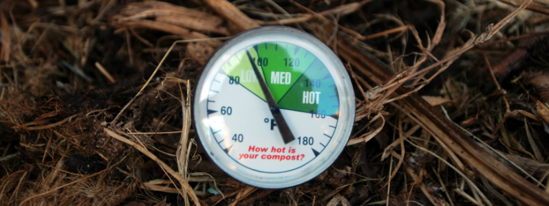 The 10 Best Compost Thermometers – [Reviews & Rankings]