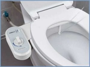 Admirable Toilet Bowl Bidet Combo Inzonedesignstudio Interior Chair Design Inzonedesignstudiocom
