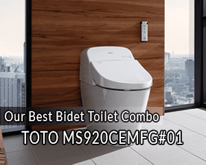Pleasing The 5 Best Bidet Toilet Combos Reviews Rankings Evergreenethics Interior Chair Design Evergreenethicsorg