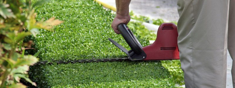 The 5 Best Manual Lawn Edgers – [Reviews & Rankings]