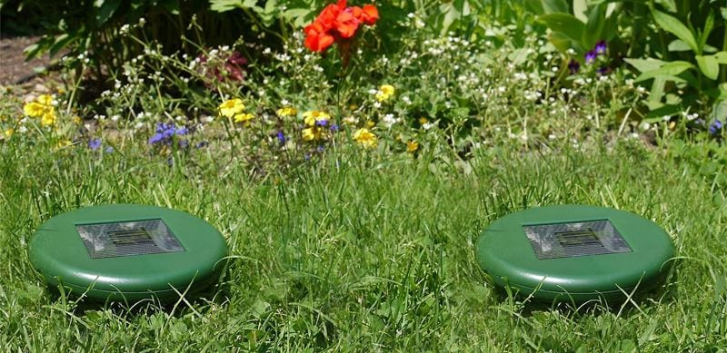 The 5 Best Solar Pest Repellers – [Reviews & Rankings]