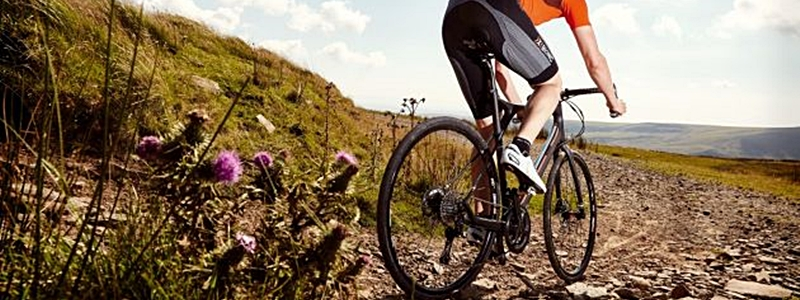 The 5 Best Gravel Bikes Under $1500 [Reviewed & Ranked]