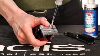 how to oil clippers